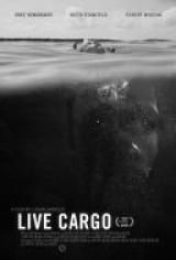 Żywy towar - Live Cargo *2016* [480p] [WEB-DL] [XviD] [AC3-MX] [Lektor PL] torrent