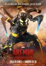 Ant-Man (2015) [PAL] [DVD5] [Dubbing i Napisy PL] V62 torrent