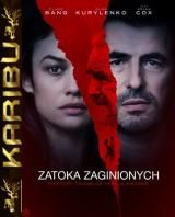 Zatoka zaginionych - The Bay of Silence *2020* [WEB-DL] [XviD-KiT] [Lektor PL] [Karibu] torrent